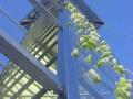 struttura-a-basso-impatto-ambientale-torre-trasparente