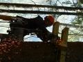 lavori-su-fune-costruzione-parchi-avventura2