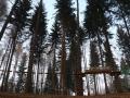 panoramica-parco-avventura